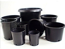 black-nursery-containers